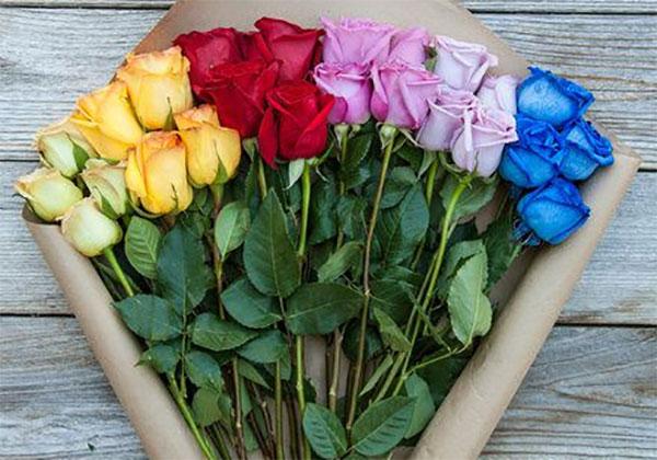 Ý nghĩa của số lượng hoa hồng - BuaXua vn