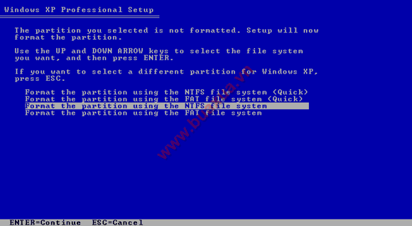 Format the partition using the NTFS file system
