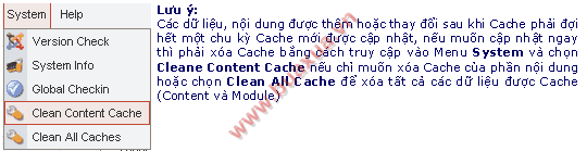 cleane_cache.png