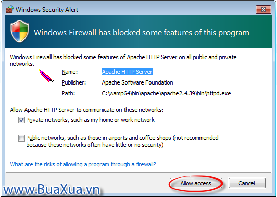 Hôp thoại Windows Security Alert