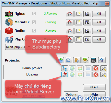 Subdirectory và Local Virtual Server